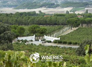 Finca Villacreces, certificada Wineries for Climate Protectios