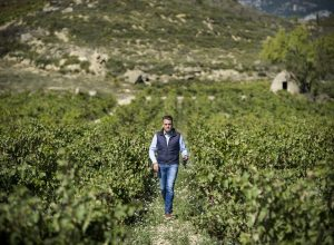 Certificado Wineries for Climate Protection